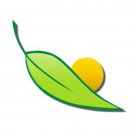 Quelato de Hierro 4,2% (Orto-Orto) (5 Kg)