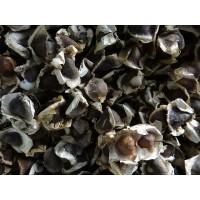 Semilla de Moringa Orgánica en Venta Oleífera