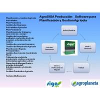 Software Agricola    Planificación, Administración y Gestión  On Line    Agrosiga Producción Agrícola