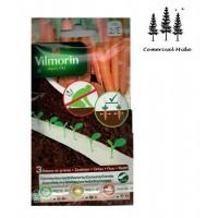 3 Cintas Vilmorin Zanahoria Presto Hf1/nanco