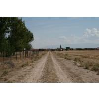 se Vende Parcela Plantada de Chopo en Segovia