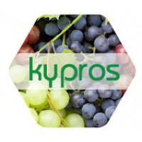 Kypros 20 L