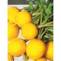 Rabanito - Rabano Amarillo. Yellow. 100 Gr /