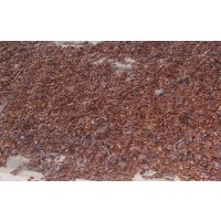 Semillas de Kaki, Diospyrus Virginiana 1KG Caqui