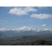 Gran Dehesa de Montaña