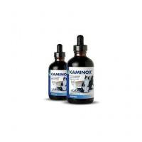 Kaminox Complemento Alimenticio para Gatos pa