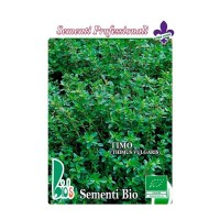 Tomillo - Semillas Ecológicas