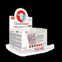 Cevital Energía para Terneros con Problemas N