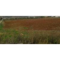 Finca de 5 Hectáreas en Pinsoro (Cinco Villas)