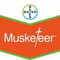 Musketeer Bayer 1L Herbicida Pre-Post Emergencia Precoz
