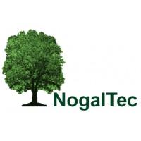 Plantaciones de Nogal