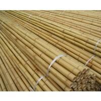 Tutores de Bambú de 75 Cm 6/8 Mm 500Pcs
