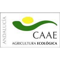 Gel de Aloe Vera Ecológico por Encargo