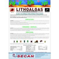 Lithoalgas