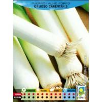 Puerro Grueso Carentan Ecologico. 2 Gr. 500 Semillas-Seeds. Bio Ecológicas.