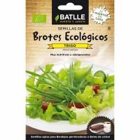 Trigo - Semillas de Brotes ECO 33 Gr