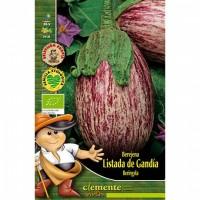 Berenjena Listada de Gandía.semillas Ecológicas 2Gr