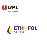 Ethofol 500 SC, Herbicida Sistémico y Selectivo de UPL Iberia