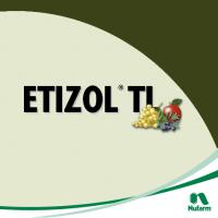 Etizol TL, Herbicida Postemergencia Nufarm