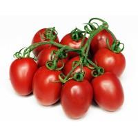 Tomate Pera 270 Plantas