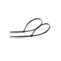 Abrazaderas de Nylon 100 Uds. 2.6X160