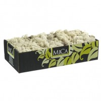 Musgo Preservado 500 Gr Color Natural Blanco Ocre