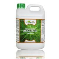 Agrobeta Cannabis Enraizador, 5L