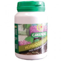Hormo Green H1 Fito Hormonas Enraizantes (Fun