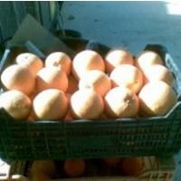 Naranjas Navelia Caja de 15 Kg