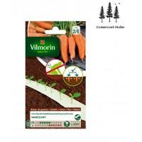 2 Cintas Vilmorin 350 Semillas Zanahoria Nanc