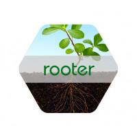 Rooter Solución NPK con Aminoácidos y Hierro