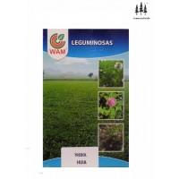 Semillas WAM Trébol Blanco Huia 1Kg Leguminosas (Trifolium Repens)