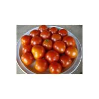 Tomate Pequeño de Mata Baja Ecológico 0,2g