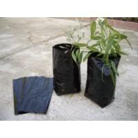 Bolsa para Plantar Olivos y Frutales. Medidas. 18 X 25 Cm . 200 Unidades