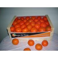 Mandarinas  Clemenules Caja de 15 Kilos