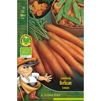 Zanahoria Berlicum. Semillas Ecológicas 8Gr
