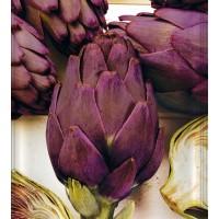 Alcachofa Violeta Purple Romagna. Envase de 2