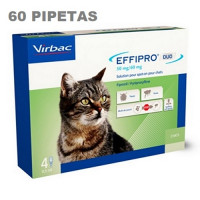 Effirpro DUO SPOT ON 60 Pipetas para Gatos