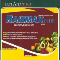 Raizmax Plus. Enraizante y Bioestimulant Depósito de 1250 KG de Fertiatlántica
