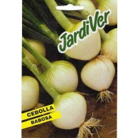 Semillas Cebolla Babosa 10Grs