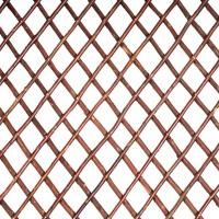 Celosia Mimbre Extensible Sin Hojas de 1x2 Mts