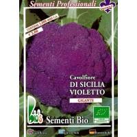 Coliflor Violeta de Sicilia - 50 Gr Semillas Ecológicas