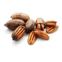 Pecan, Nuts, Pecanas, Nueces, Nuez,almond (Carya Illinoinensis)