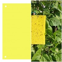 Trampa Cromática Atrapainsectos. Amarilla para Pulgones, Moscas Blancas Etc.