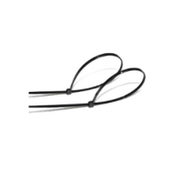 Abrazaderas de Nylon 100 Uds. 4.8X300