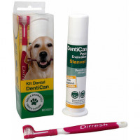 Stangest Kit Dental Cepillo + Pasta