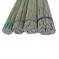 Tutor de Bambú de 120 Cm. 10/12 Mm 400 Pcs
