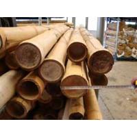 Bambú Decoracion 120Cm de Largo y Calibre 40/