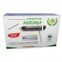 Extracto de Moringa Vitalmor en Ampollas
