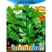 Perejil Comun Hoja Grande Ecologico. 3 Gr.1800 Semillas-Seeds. Bio Ecológicas.